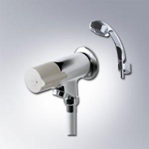 sen tắm INAX BFV-10-1C