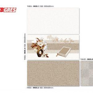 bộ ốp tường 30x60 thb-0025