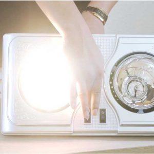 đèn sưởi 2 bóng H2B